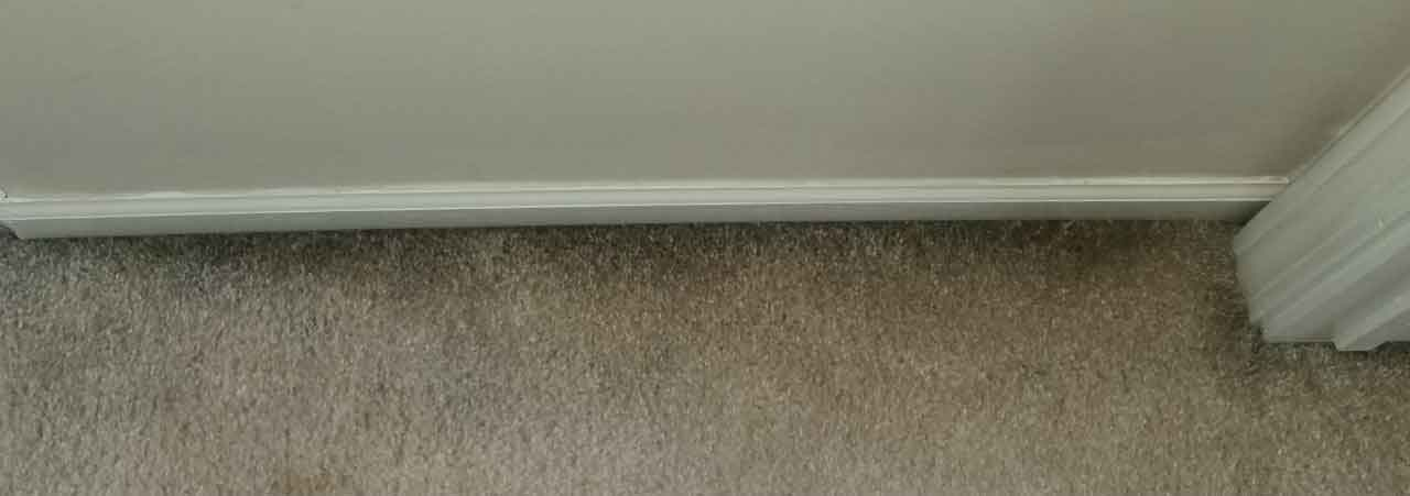 What are those black streaks on my carpet?
